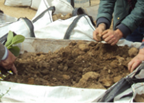 Atelier jardinage Centre d'accueil de jour Marie de Miribel de la Fondation Oeuvre de la Croix Saint-Simon